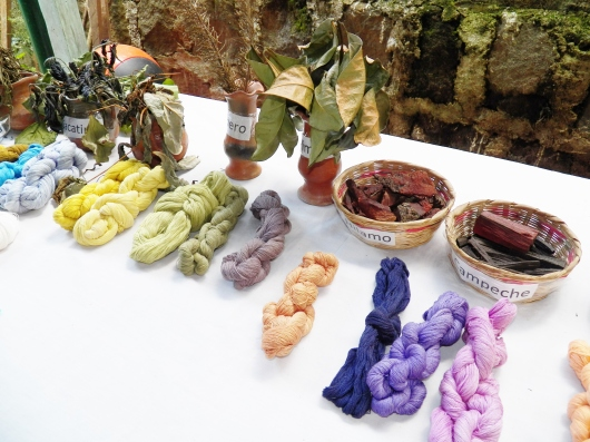 Mayan herbs used to dye cotton for weaving.